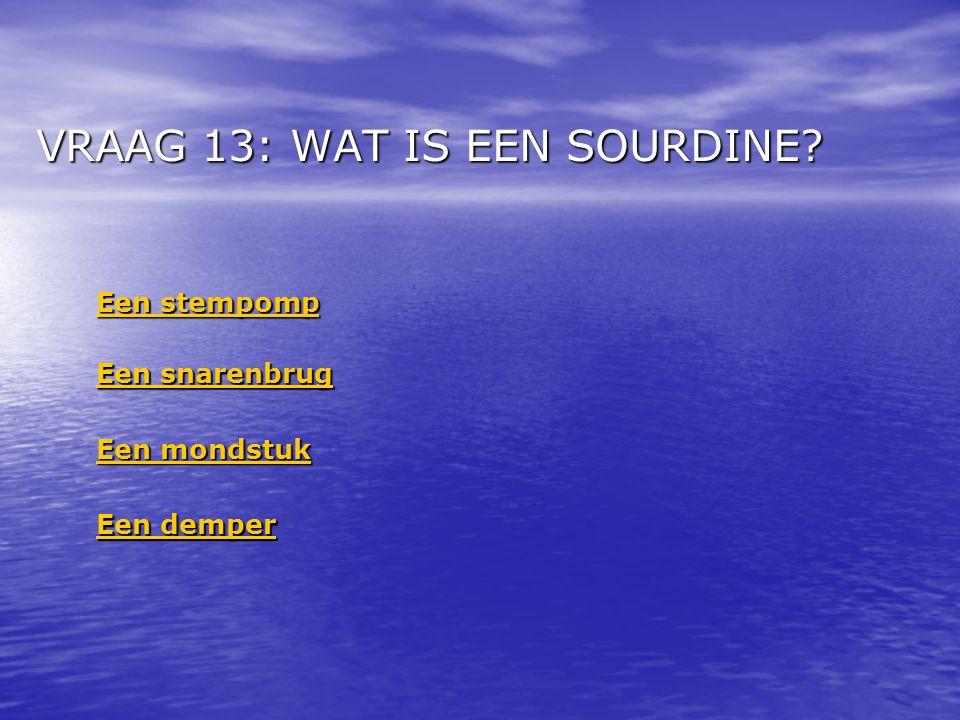 VRAAG 13: WAT IS EEN SOURDINE.