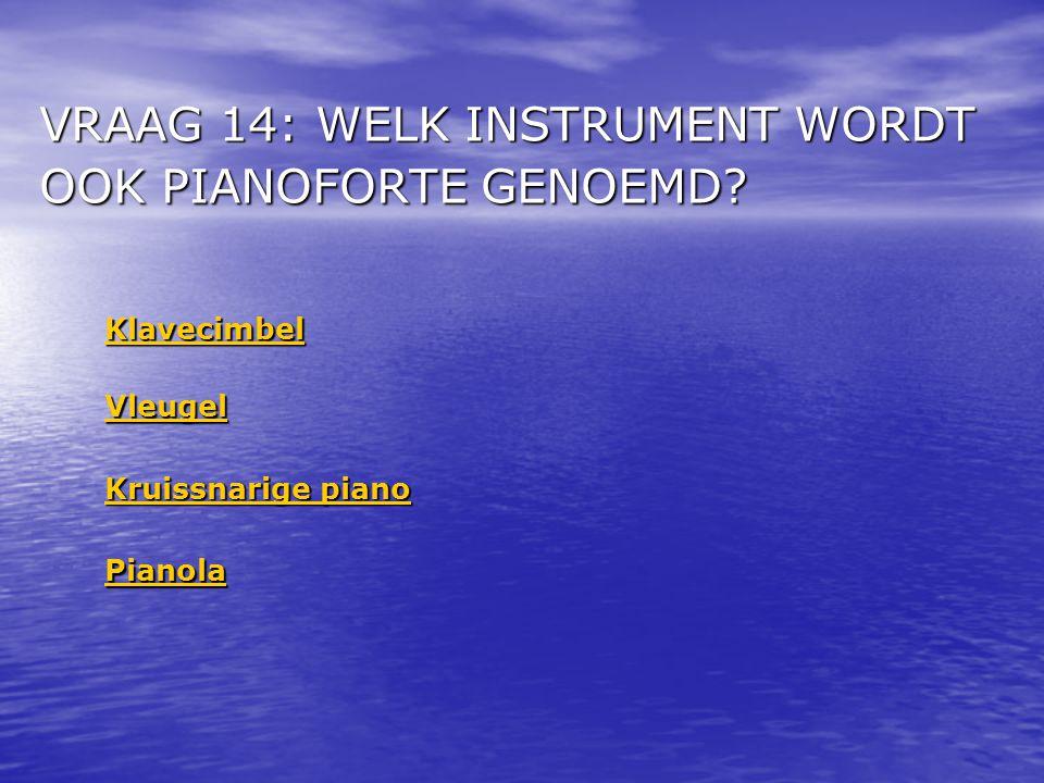 VRAAG 14: WELK INSTRUMENT WORDT OOK PIANOFORTE GENOEMD.