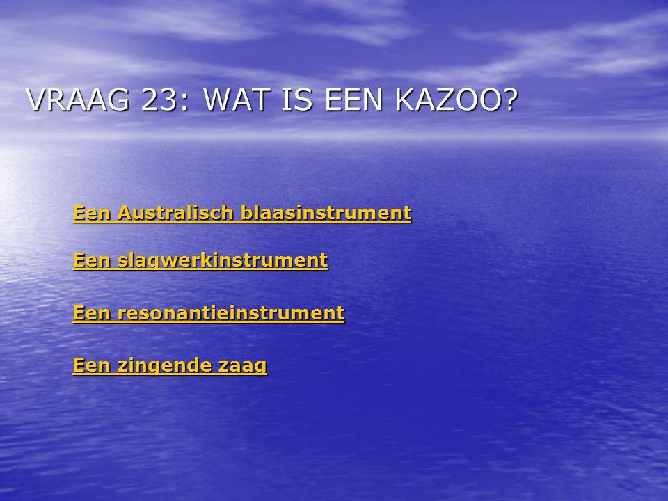 VRAAG 23: WAT IS EEN KAZOO.
