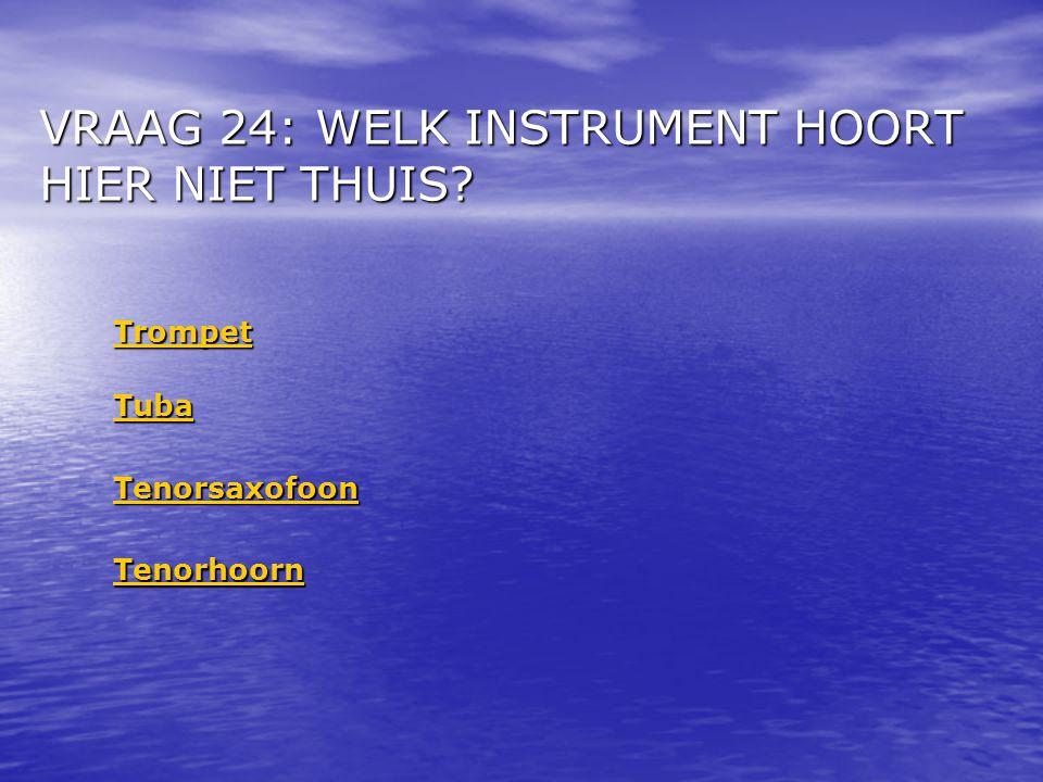 VRAAG 24: WELK INSTRUMENT HOORT HIER NIET THUIS? Trompet Tenorsaxofoon Tenorhoorn Tuba