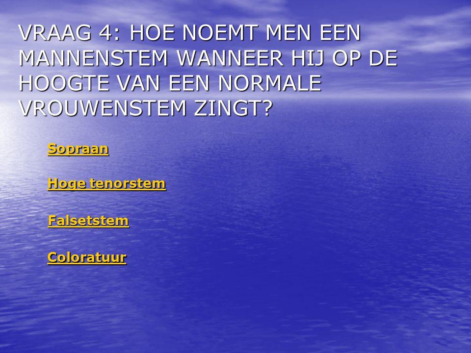 VRAAG 15: WAT IS ONGEVEER DE GEMIDDELDE SNELHEID VAN HET GELUID.