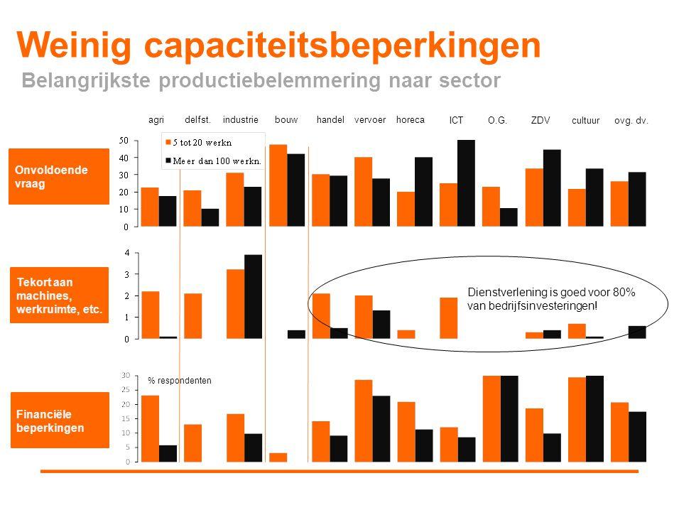 Weinig capaciteitsbeperkingen Onvoldoende vraag Tekort aan machines, werkruimte, etc. Financiële beperkingen Dienstverlening is goed voor 80% van bedr