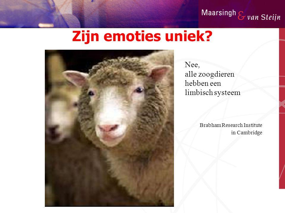 Zijn emoties uniek? Nee, alle zoogdieren hebben een limbisch systeem Brabham Research Institute in Cambridge