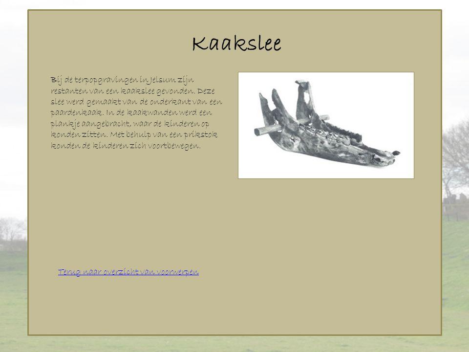 Kaakslee Terug naar overzicht van voorwerpen Bij de terpopgravingen in Jelsum zijn restanten van een kaakslee gevonden. Deze slee werd gemaakt van de