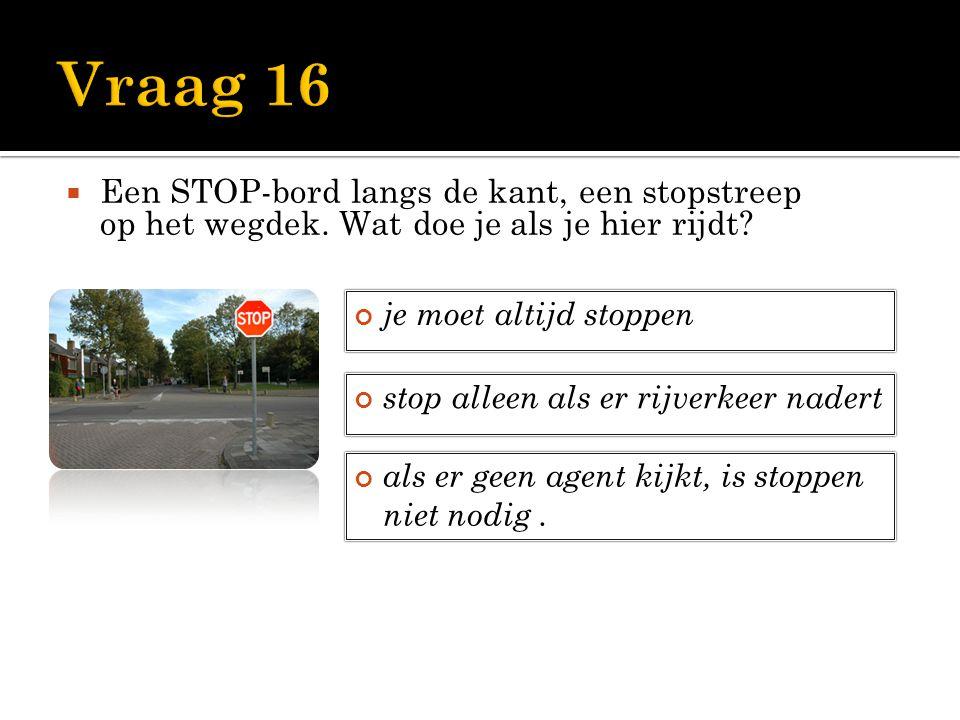  Een STOP-bord langs de kant, een stopstreep op het wegdek. Wat doe je als je hier rijdt? je moet altijd stoppen stop alleen als er rijverkeer nadert