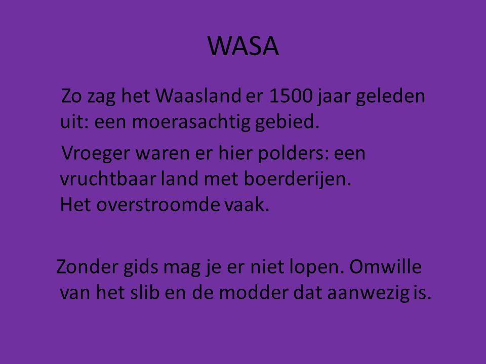 WASA Zo zag het Waasland er 1500 jaar geleden uit: een moerasachtig gebied. Vroeger waren er hier polders: een vruchtbaar land met boerderijen. Het ov