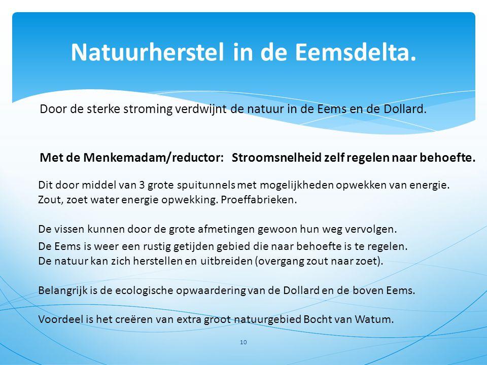 Natuurherstel in de Eemsdelta. 10 Door de sterke stroming verdwijnt de natuur in de Eems en de Dollard. Met de Menkemadam/reductor: Stroomsnelheid zel