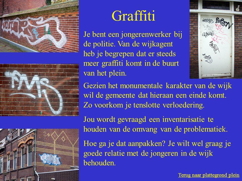 Terug naar plattegrond plein Graffiti Je bent een jongerenwerker bij de politie.