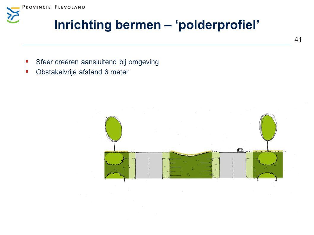 Inrichting bermen – 'polderprofiel'  Sfeer creëren aansluitend bij omgeving  Obstakelvrije afstand 6 meter 41