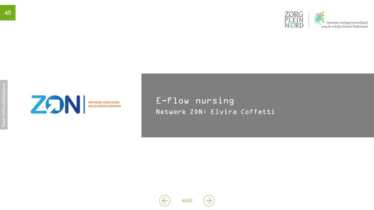45/62 45 E-Flow nursing Netwerk ZON: Elvira Coffetti