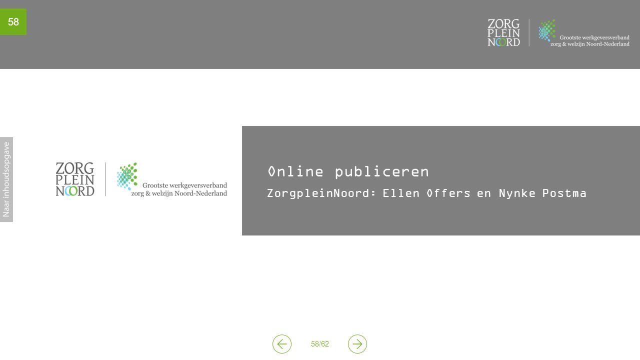58 58/62 Online publiceren ZorgpleinNoord: Ellen Offers en Nynke Postma