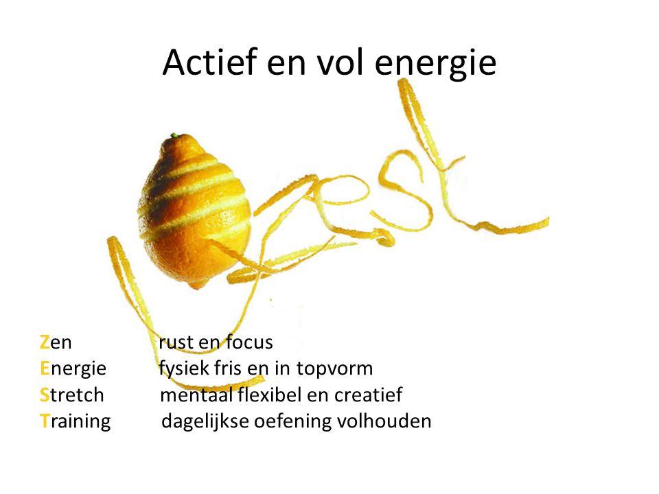 Actief en vol energie Zen rust en focus Energie fysiek fris en in topvorm Stretch mentaal flexibel en creatief Training dagelijkse oefening volhouden