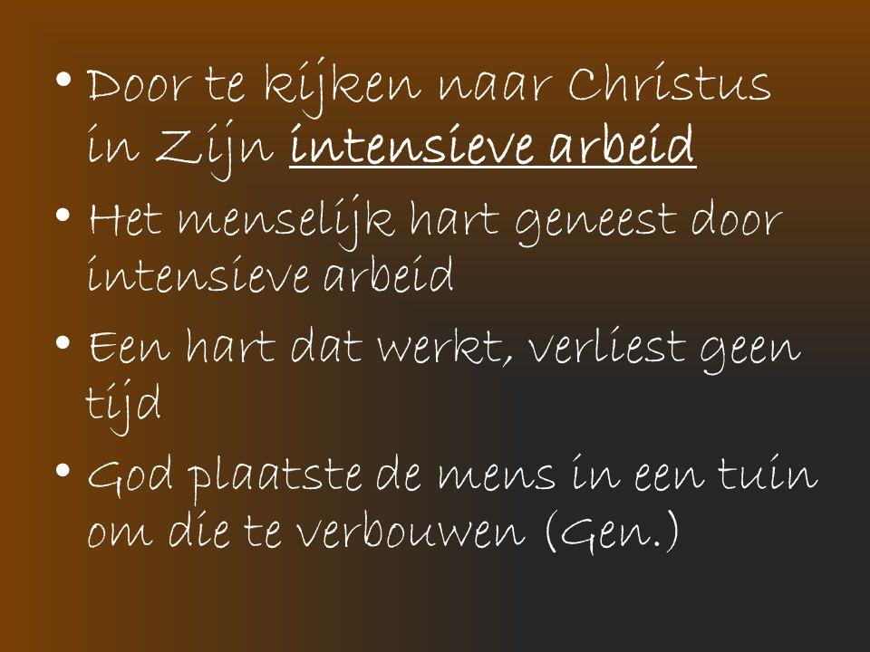 • Door te kijken naar Christus in Zijn intensieve arbeid • Het menselijk hart geneest door intensieve arbeid • Een hart dat werkt, verliest geen tijd