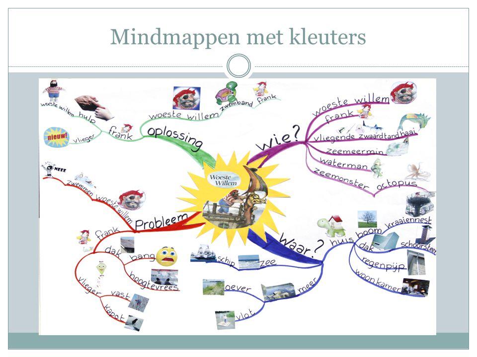 Aan het werk  Maken van een mindmap - vanuit een tekst uit de zaakvakken - vanuit een prentenboek  Gebruik ter ondersteuning de mindmap over 'hoe maak ik een mindmap?'.