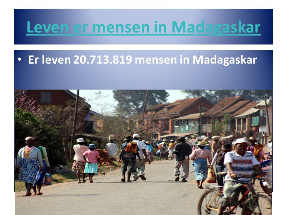 Leven er mensen in Madagaskar • Er leven 20.713.819 mensen in Madagaskar