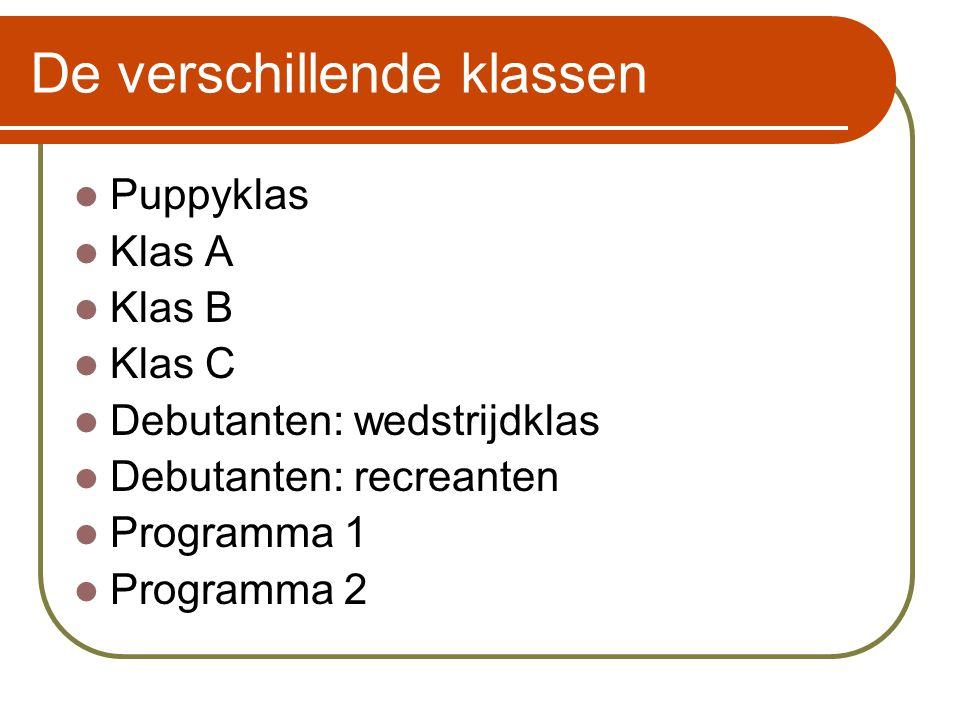 De verschillende klassen  Puppyklas  Klas A  Klas B  Klas C  Debutanten: wedstrijdklas  Debutanten: recreanten  Programma 1  Programma 2