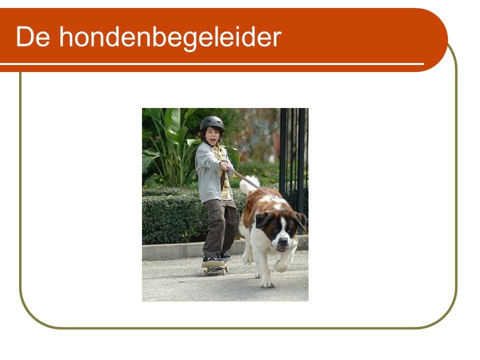 De hondenbegeleider