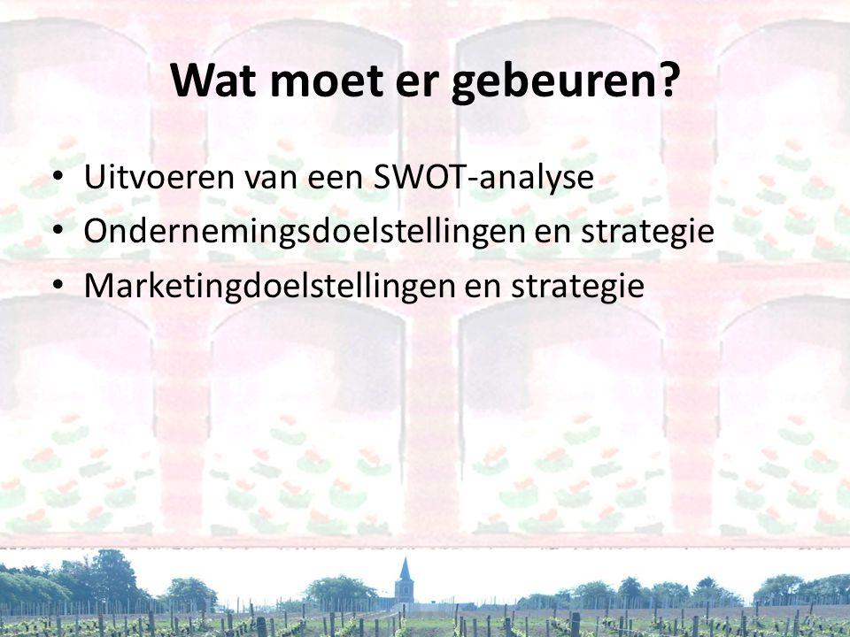 Wat moet er gebeuren? • Uitvoeren van een SWOT-analyse • Ondernemingsdoelstellingen en strategie • Marketingdoelstellingen en strategie