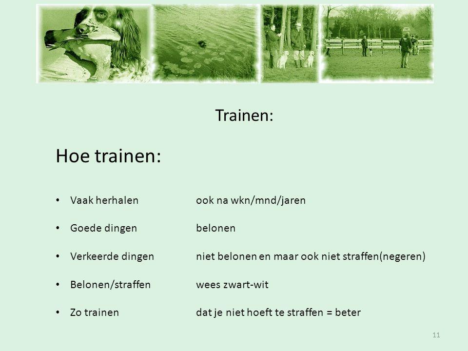 Inschrijfavond Trainen: 11 Hoe trainen: • Vaak herhalenook na wkn/mnd/jaren • Goede dingen belonen • Verkeerde dingenniet belonen en maar ook niet str