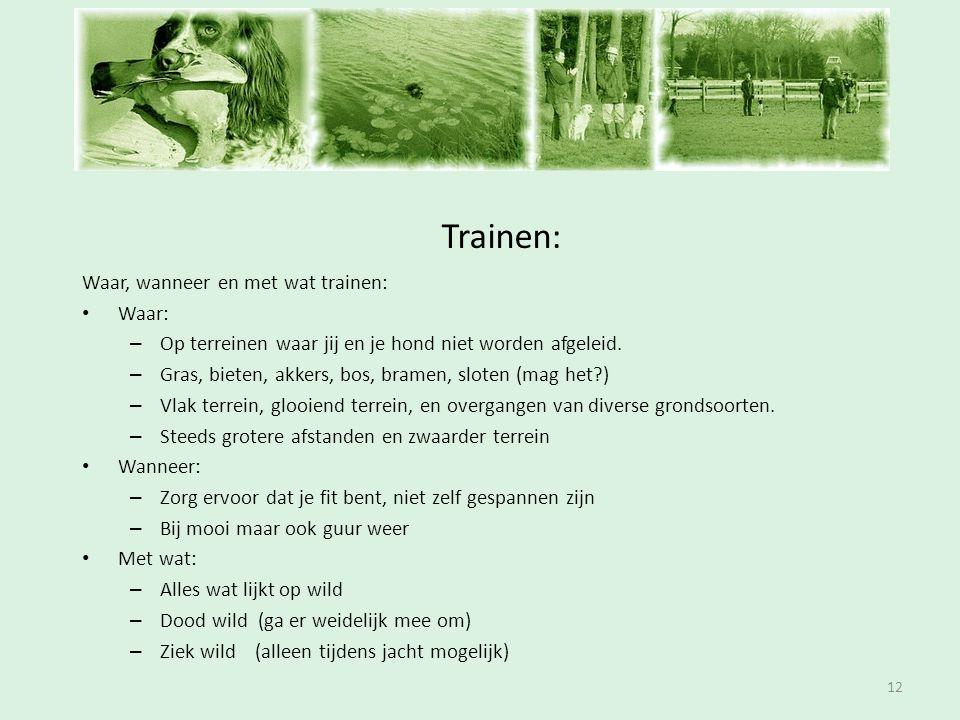 Inschrijfavond Trainen: 12 Waar, wanneer en met wat trainen: • Waar: – Op terreinen waar jij en je hond niet worden afgeleid. – Gras, bieten, akkers,