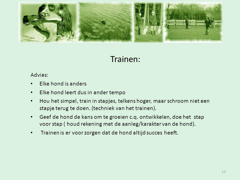 Inschrijfavond Trainen: 13 Advies: • Elke hond is anders • Elke hond leert dus in ander tempo • Hou het simpel, train in stapjes, telkens hoger, maar