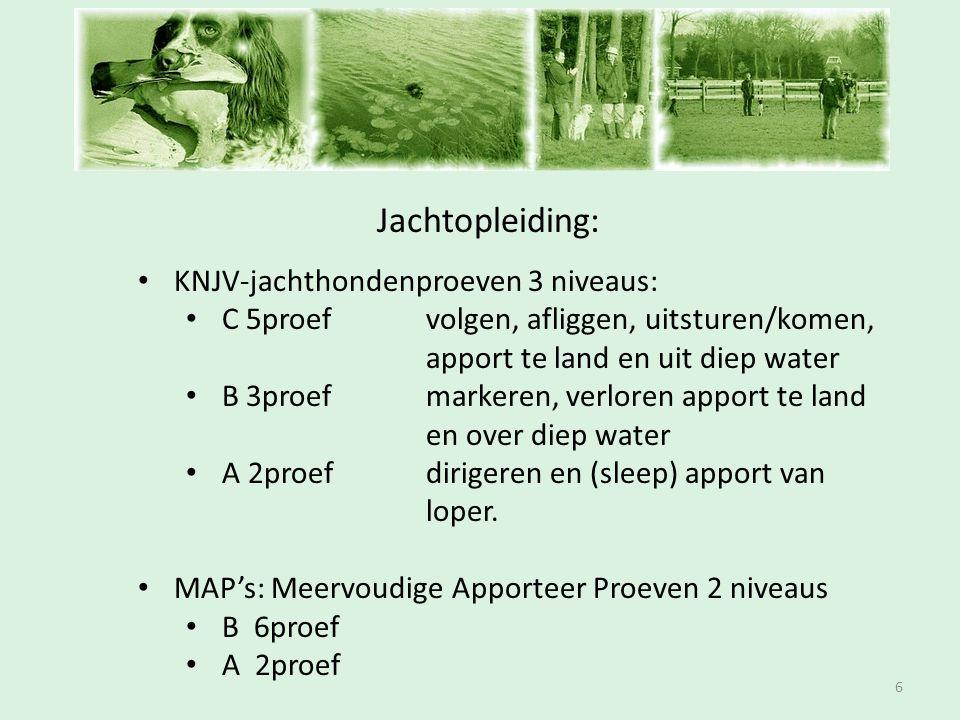 Inschrijfavond Jachtopleiding: 6 • KNJV-jachthondenproeven 3 niveaus: • C 5proefvolgen, afliggen, uitsturen/komen, apport te land en uit diep water •