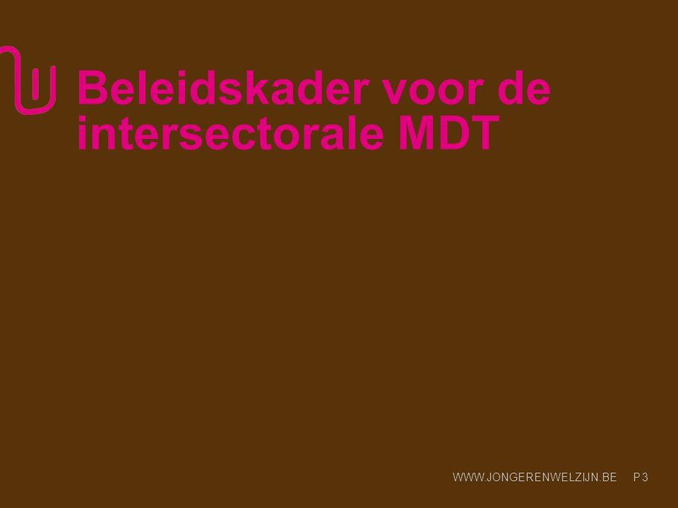 WWW.JONGERENWELZIJN.BE P 3 Beleidskader voor de intersectorale MDT