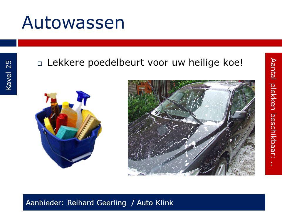 Autowassen Kavel 25  Lekkere poedelbeurt voor uw heilige koe! Aanbieder: Reihard Geerling / Auto Klink Aantal plekken beschikbaar:..