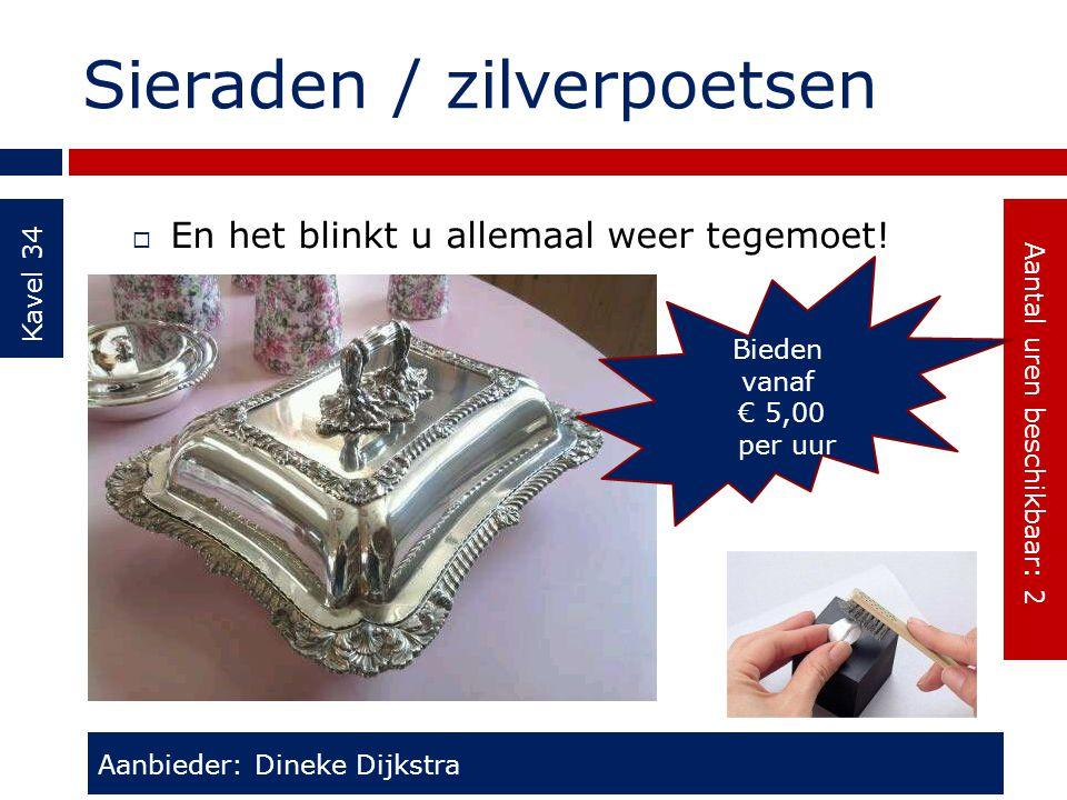 Sieraden / zilverpoetsen Kavel 34  En het blinkt u allemaal weer tegemoet! Aanbieder: Dineke Dijkstra Aantal uren beschikbaar: 2 Bieden vanaf € 5,00
