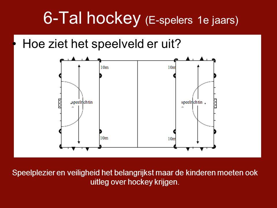 6-Tal hockey (E-spelers 1e jaars) •Hoe ziet het speelveld er uit.
