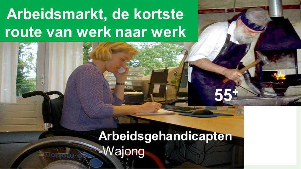 Arbeidsgehandicapten -Wajong 55 + Arbeidsmarkt, de kortste route van werk naar werk