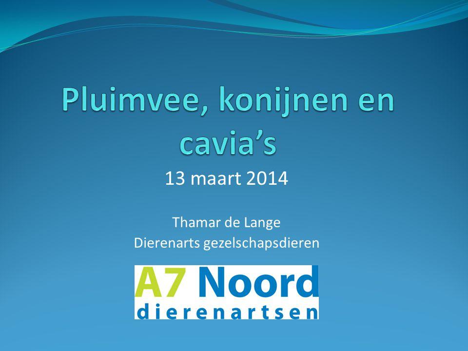 13 maart 2014 Thamar de Lange Dierenarts gezelschapsdieren