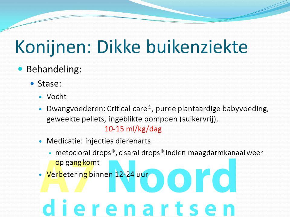 Konijnen: Dikke buikenziekte  Behandeling:  Stase:  Vocht  Dwangvoederen: Critical care®, puree plantaardige babyvoeding, geweekte pellets, ingebl