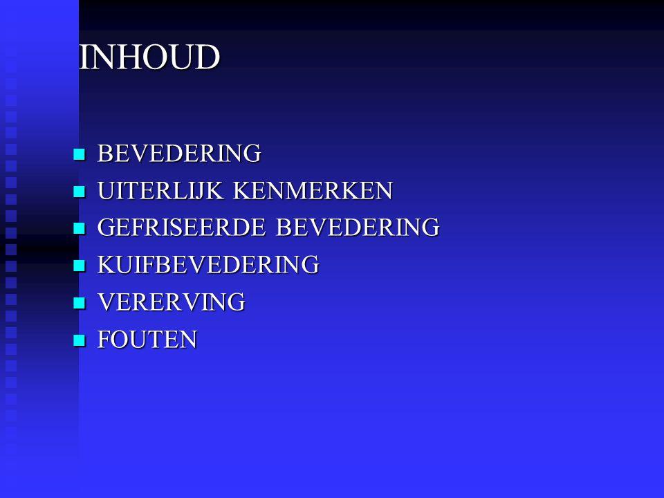 INHOUD INHOUD  BEVEDERING  UITERLIJK KENMERKEN  GEFRISEERDE BEVEDERING  KUIFBEVEDERING  VERERVING  FOUTEN