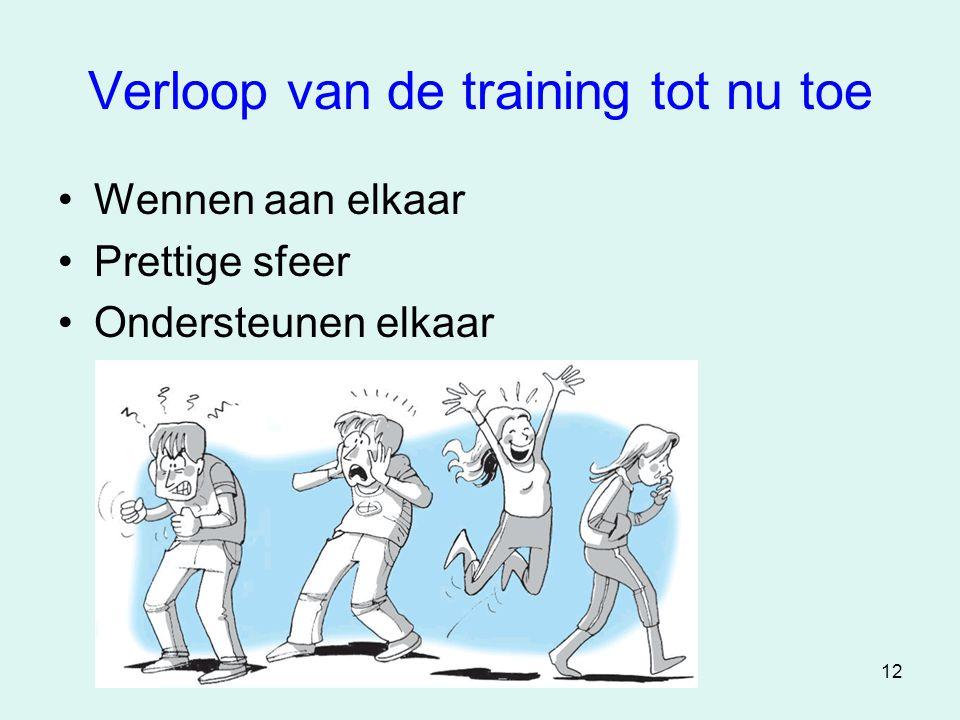 12 Verloop van de training tot nu toe •Wennen aan elkaar •Prettige sfeer •Ondersteunen elkaar