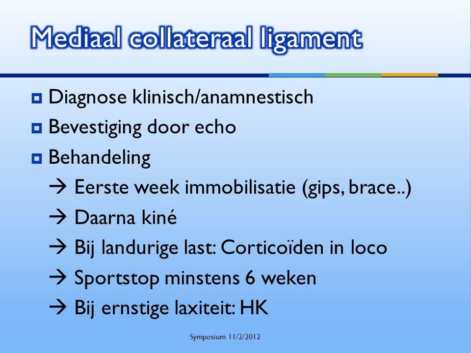 Diagnose klinisch/anamnestisch  Bevestiging door echo  Behandeling  Eerste week immobilisatie (gips, brace..)  Daarna kiné  Bij landurige last:
