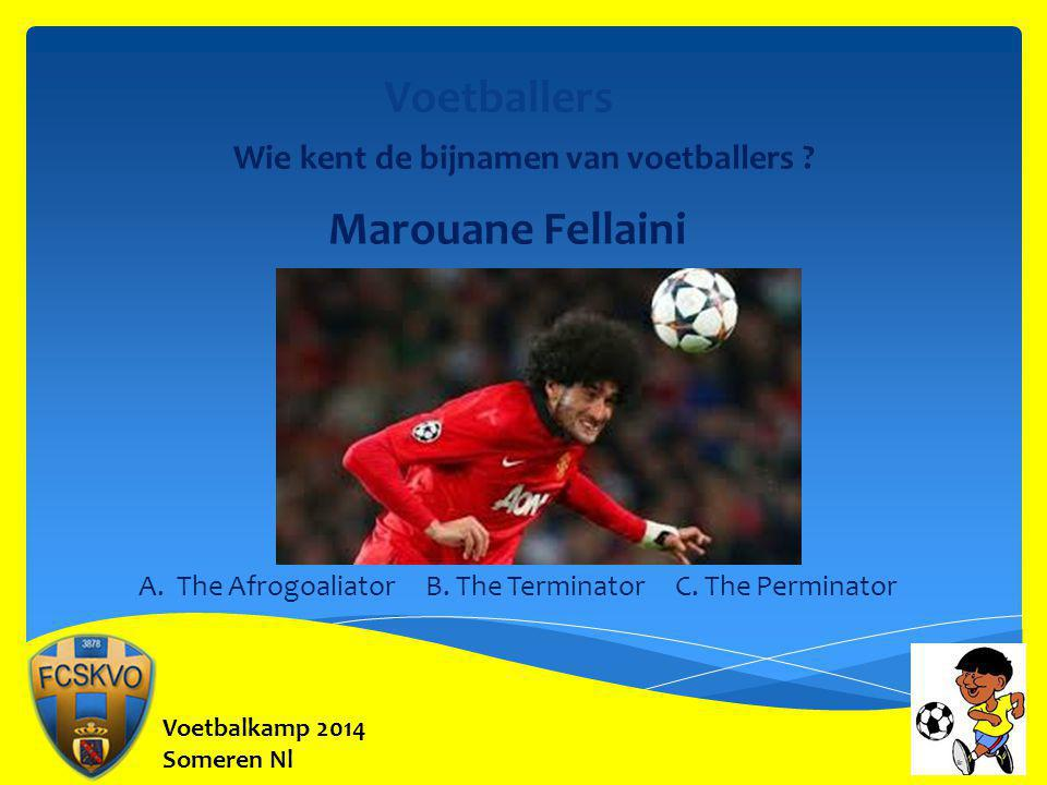 Voetbalkamp 2014 Someren Nl A.The Afrogoaliator B.
