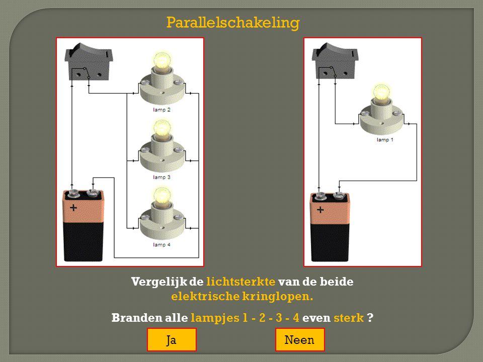 Vergelijk de lichtsterkte van de beide elektrische kringlopen. Branden alle lampjes 1 - 2 - 3 - 4 even sterk ? JaNeen Parallelschakeling