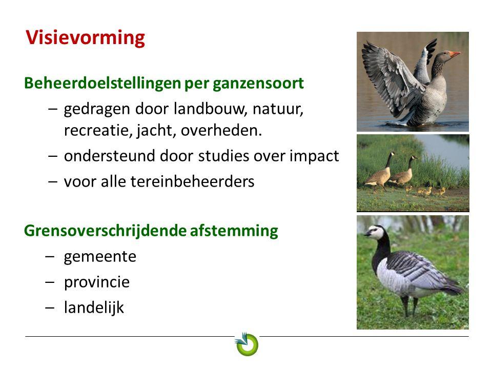 Visievorming Beheerdoelstellingen per ganzensoort –gedragen door landbouw, natuur, recreatie, jacht, overheden.