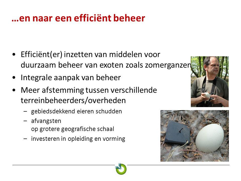 …en naar een efficiënt beheer •Efficiënt(er) inzetten van middelen voor duurzaam beheer van exoten zoals zomerganzen •Integrale aanpak van beheer •Meer afstemming tussen verschillende terreinbeheerders/overheden –gebiedsdekkend eieren schudden –afvangsten op grotere geografische schaal –investeren in opleiding en vorming