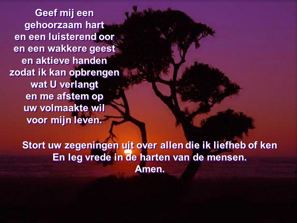 Geef me, Heer, wat U vindt dat goed voor mij is en waarvan ik niet weet hoe ik het moet vragen.