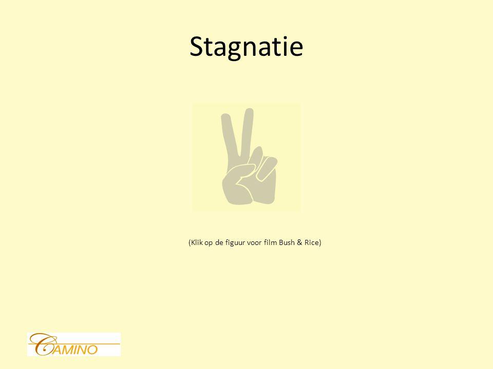 Stagnatie (Klik op de figuur voor film Bush & Rice)