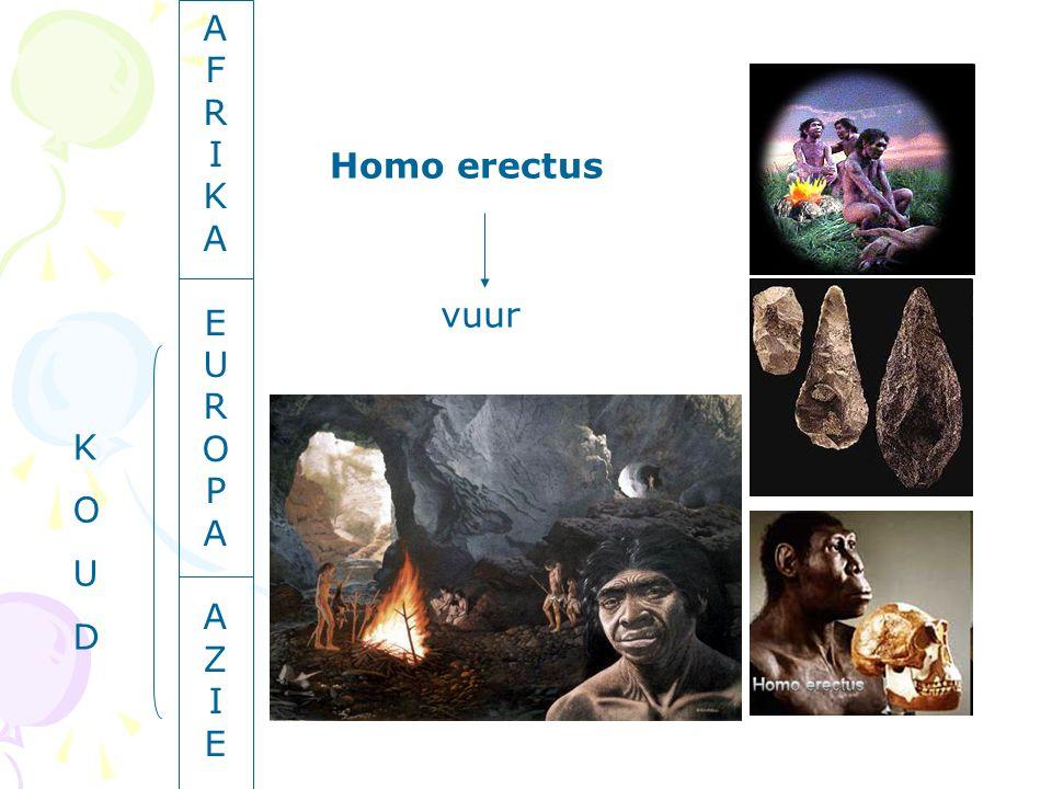 AFRIKAEUROPAAZIEAFRIKAEUROPAAZIE Homo erectus vuur KOUDKOUD