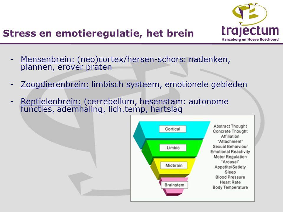 Stress en emotieregulatie, het brein -Mensenbrein: (neo)cortex/hersen-schors: nadenken, plannen, erover praten -Zoogdierenbrein: limbisch systeem, emo