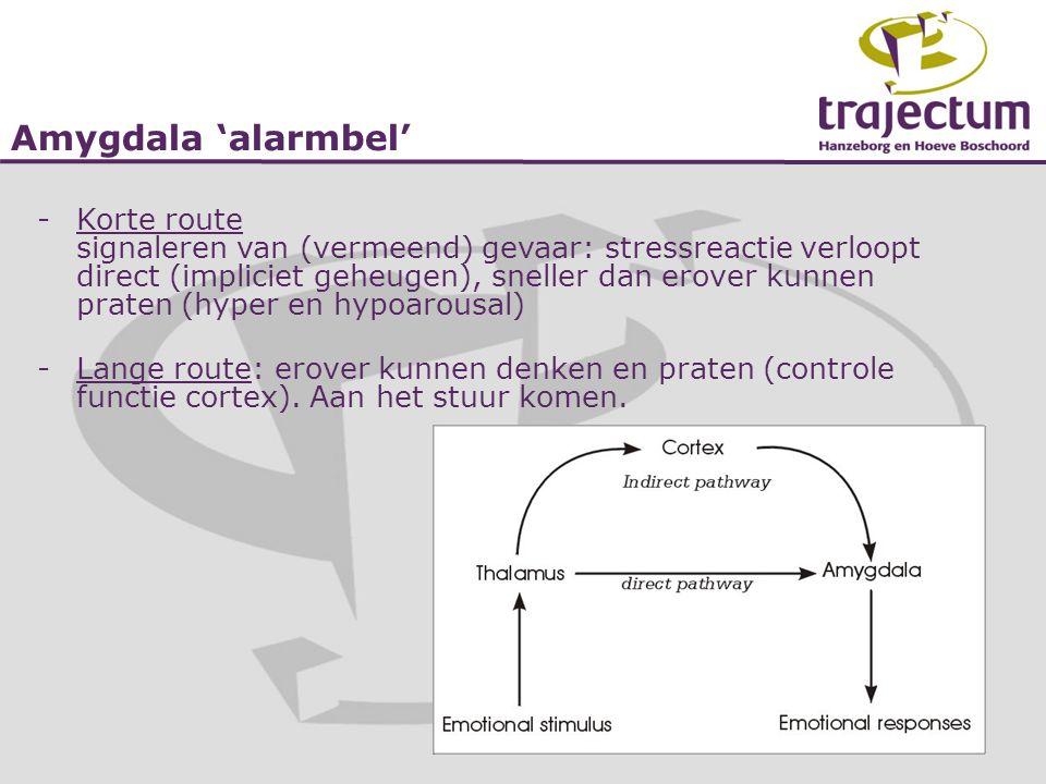 Amygdala 'alarmbel' -Korte route signaleren van (vermeend) gevaar: stressreactie verloopt direct (impliciet geheugen), sneller dan erover kunnen prate