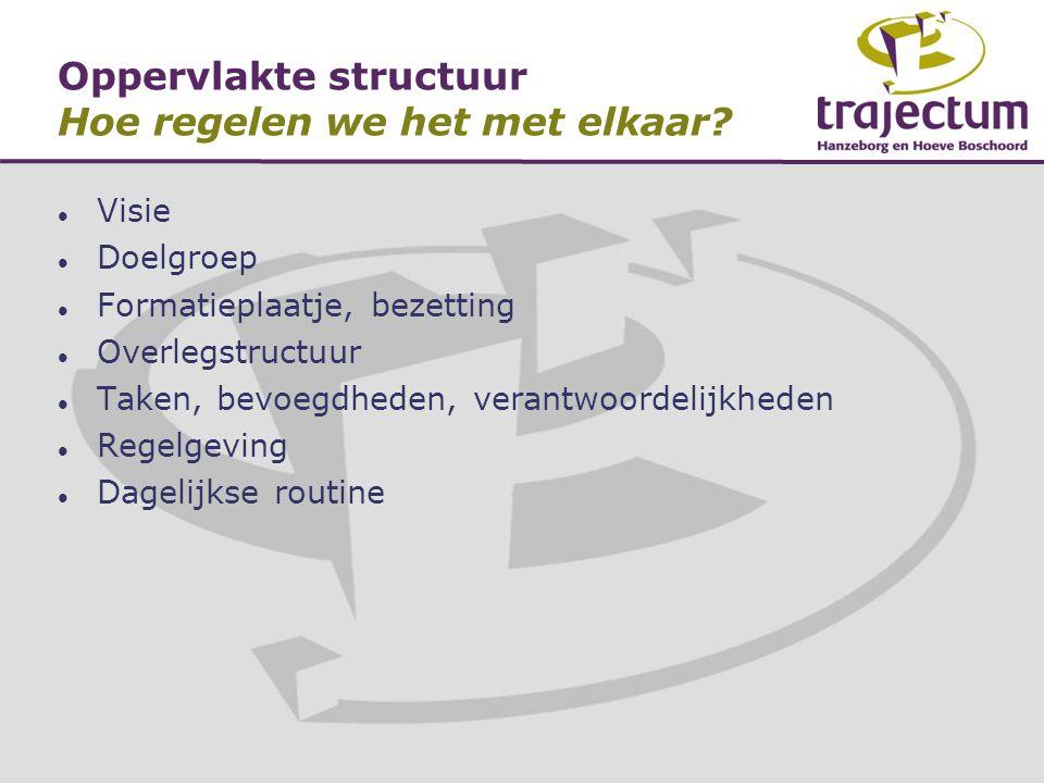 Oppervlakte structuur Hoe regelen we het met elkaar?  Visie  Doelgroep  Formatieplaatje, bezetting  Overlegstructuur  Taken, bevoegdheden, verant