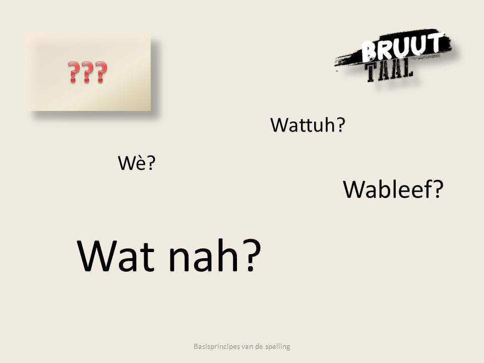 Wè Wattuh Wat nah Wableef Basisprincipes van de spelling