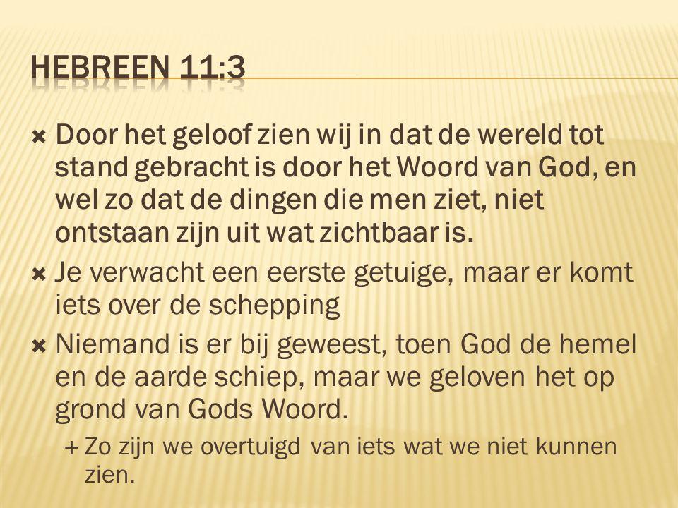  Door het geloof zien wij in dat de wereld tot stand gebracht is door het Woord van God, en wel zo dat de dingen die men ziet, niet ontstaan zijn uit wat zichtbaar is.