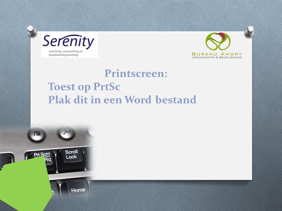 Printscreen: Toest op PrtSc Plak dit in een Word bestand