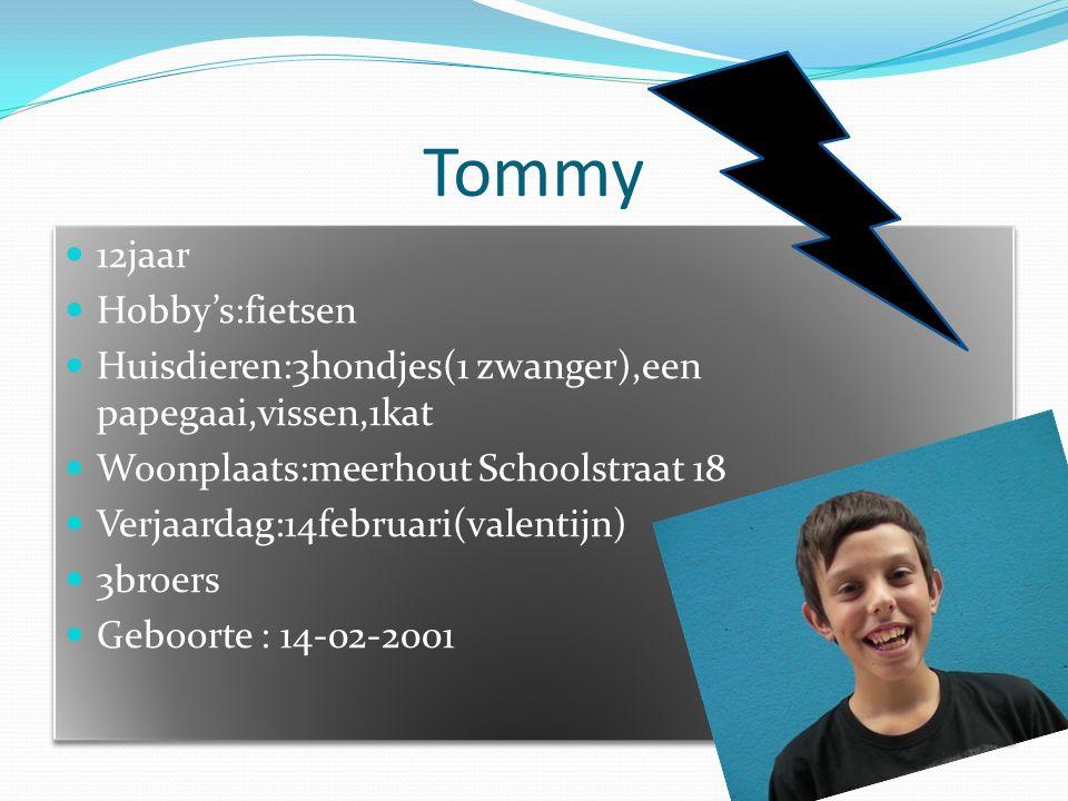 Tommy  12jaar  Hobby's:fietsen  Huisdieren:3hondjes(1 zwanger),een papegaai,vissen,1kat  Woonplaats:meerhout Schoolstraat 18  Verjaardag:14februa